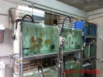 NF魚池過濾養殖系統-雲林 (4)